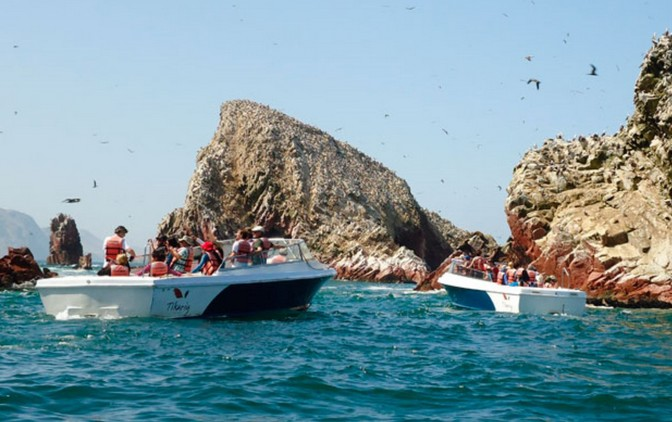 Nearly 30,000 visited Ballestas Islands, Paracas over past long weekend