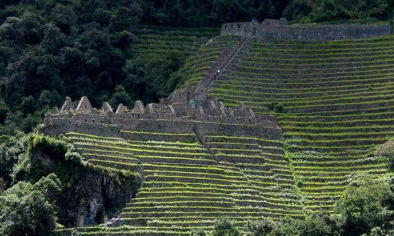 Agricultura de conservación es un legado cultural de los incas