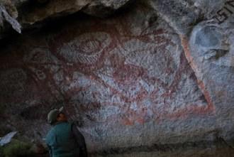 reserva-nor-yauyos-cochas-tanta-pintura-rupestre