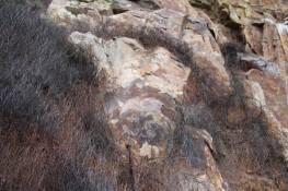 arte-rupestre-huaylillas-16