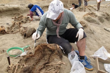 sitio-Las-Llamas-restos-niños-sacrificados-1
