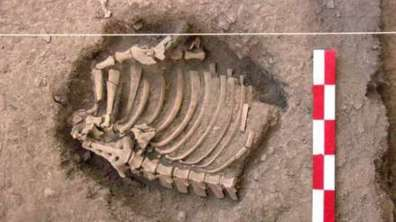 restos-3000-anos-cusco-descubren-11
