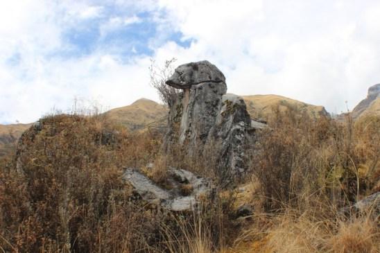 Quillarumiyoc-Anta-Cusco-30