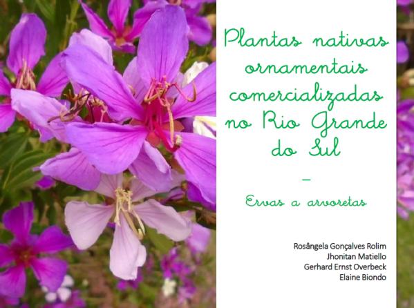 """Publicação """"Plantas nativas ornamentais comercializadas no Rio Grande do Sul"""" - 2020"""