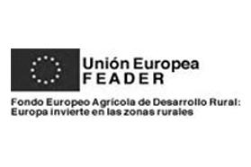 Comunidad Europea Logo