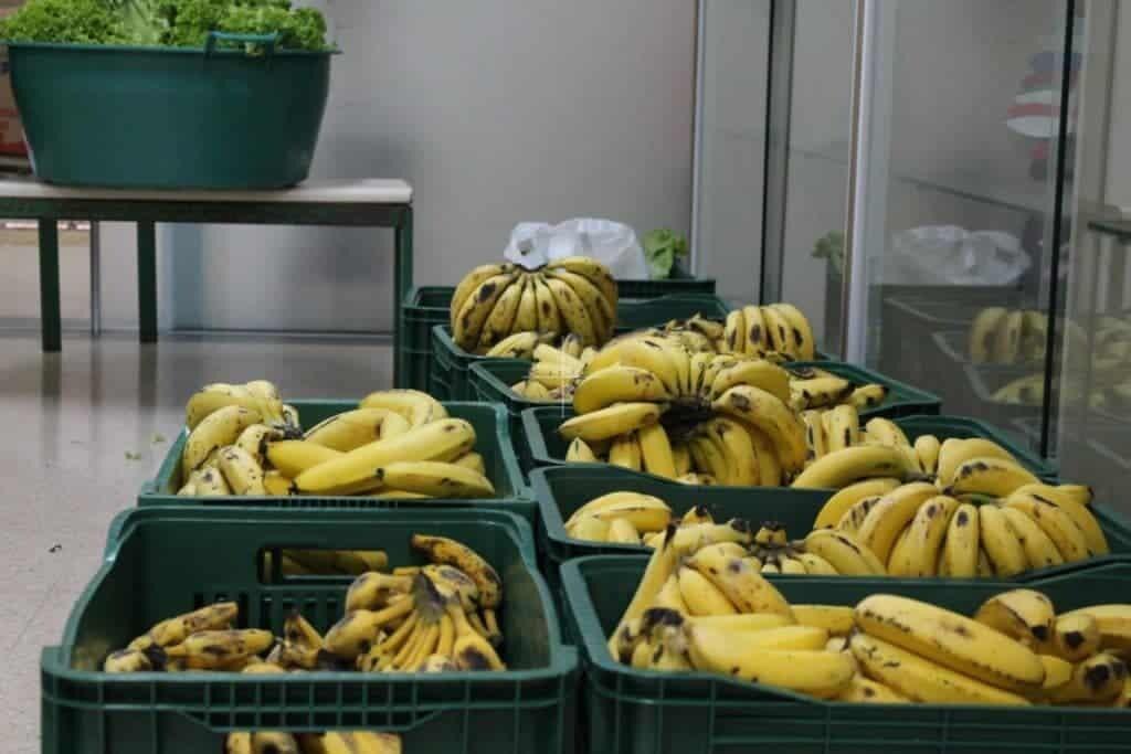 Moradores reclamam da quantidade de alimentos recebida nos kits de merenda escolar do Estado 2