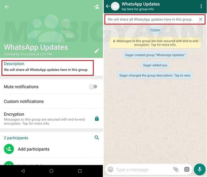 WhatsApp libera nova função para grupos e outras novidades; Confira 1