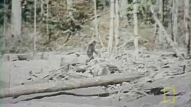 bigfoot-original.jpg