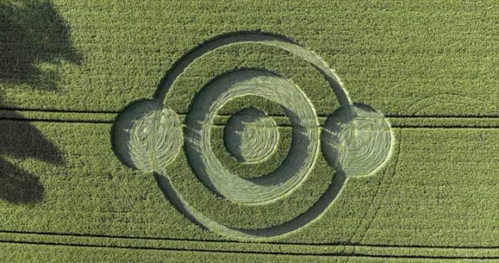 circulo-colheita-2019