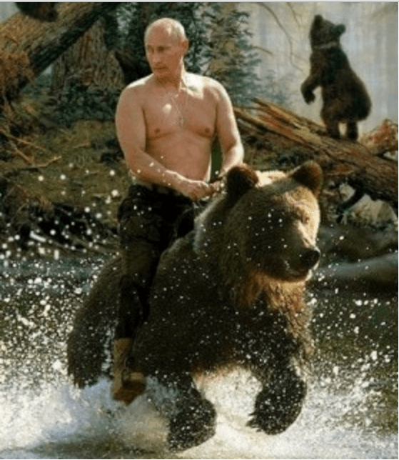 Beruang Rusia Putin