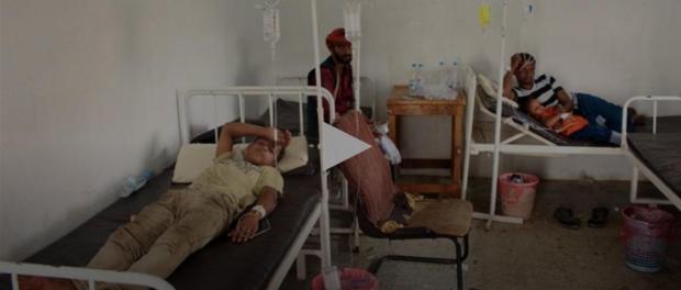 Lebih dari 2000 Orang di Yaman Tertular Penyakit Demam Berdarah