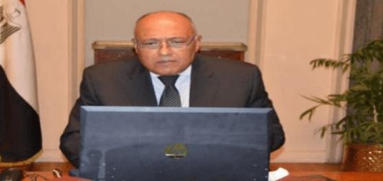 Mesir Kutuk Pendudukan Turki atas Sebagian Suriah