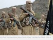 Pasukan Yaman Bunuh Komandan Senior ISIS Takfiri di Provinsi Ibb