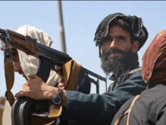 Intelijen Ungkap Alasan Mudahnya Kontrol Taliban atas Afghanistan