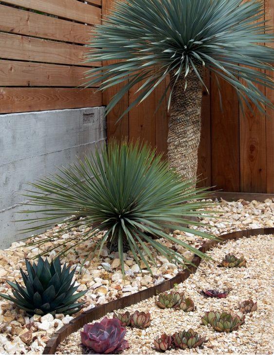 Se hai il pollice verde le aiuole con pietre naturali non - Costo palma da giardino ...
