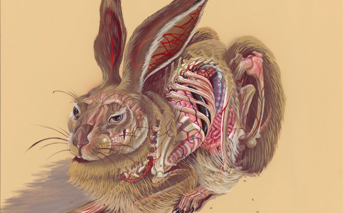 "translucent-hare-1-698x435 Releases: Nychos – ""Translucent Hare"" Print Random"