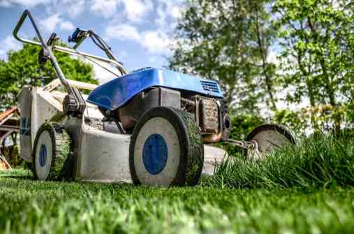 landscaping or lawn care service
