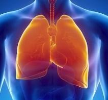 Le poumon d un fumeur