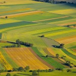 agriculture-france-developpement-futur-marche