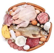 Beberapa Makanan Tinggi Protein Hewani Untuk Kesehatan Tubuh