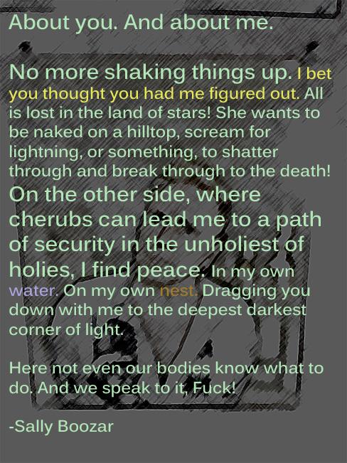 Sally Boozar Poem 3