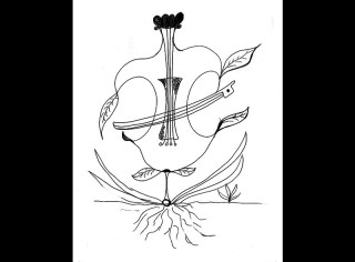 The Blooming of the First Cello