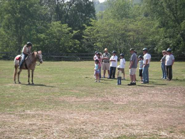 Group Lesson in Ring at Arrowmont Stables