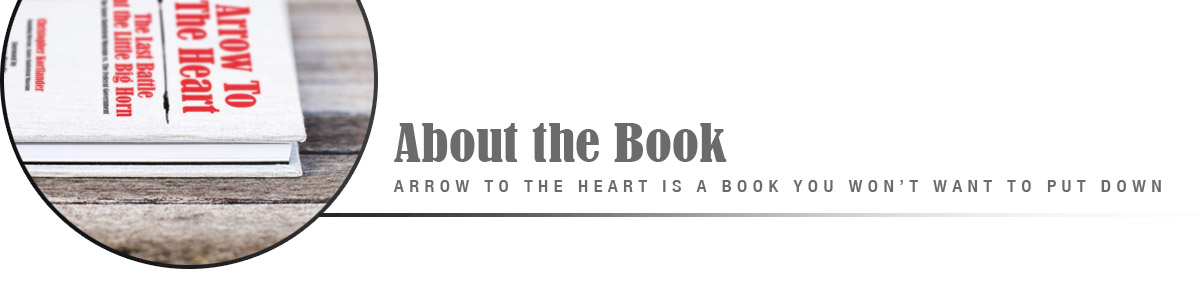 About the Book Arrow to the Heart