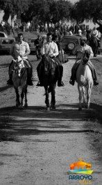Día de la Luz, caballos8