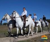 Día de la Luz, caballos10