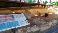 Tareas de limpieza en los larededores del Torreón de Arroyomolinos.