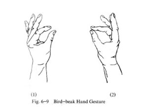 bi bird-beak gesture