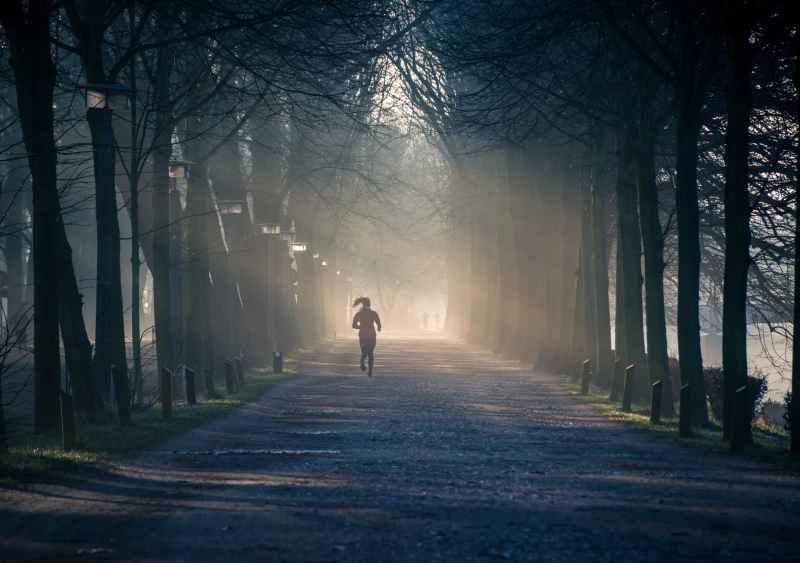 person running near street between tall trees