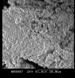 Full-size image (27 K)