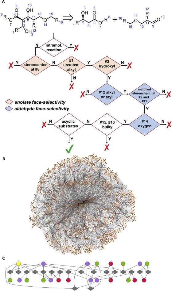 Mit Software zum Retrosyntheseplan - Erläuterung und Beispiel zum Retrosynthesemodul: Darstellung von Chematicas Entscheidungsbaum für die doppelte stereodifferenzierende Kondensation von Estern mit Aldehyden. (Abbildung: Klucznik et. al  (CC BY-NC-ND 4.0))