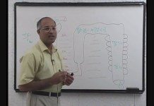 How do kidneys make urine? - Part 13