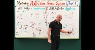 ABO Blood Group System - Blood Types