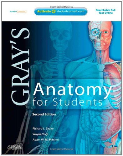 Grays Anatomy For Students 2nd Edition Pdf