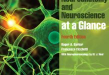 Neuroanatomy and Neuroscience at a Glance 4th Edition PDF