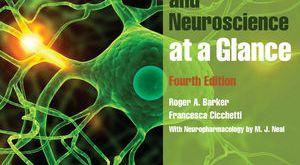 Neuroanatomy and Neuroscience at a Glance 4th Edition PDF