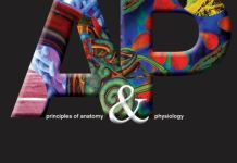 Principles of Anatomy and Physiology 13th Edition PDF