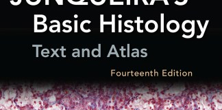 Junqueira's Basic Histology Text and Atlas 14th Edition PDF