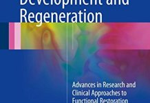 Salivary Gland Development and Regeneration PDF