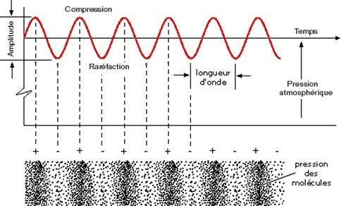 Forme d'onde sonore, amplitude et longueur d'onde