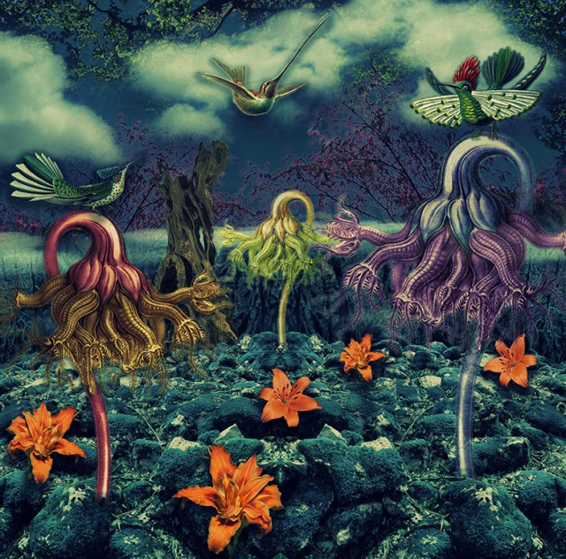 """Haeckel Revisited by Stéphanie Cousin - """"Dimension Upon request"""" – Digital Art"""