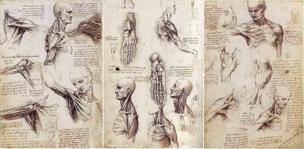 В Киеве откроется выставка изобретений Леонардо да Винчи
