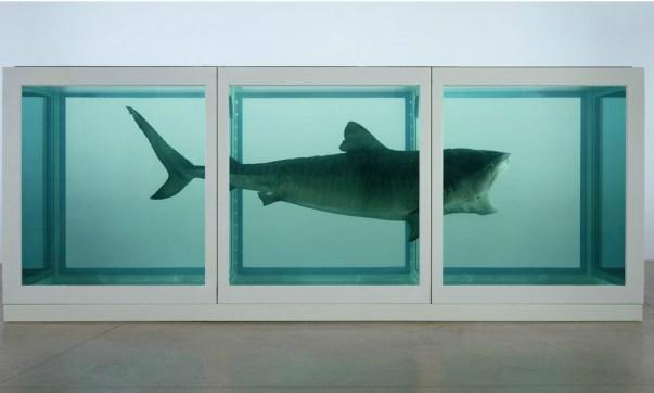 Shark Stuffed Art-News.com.ua