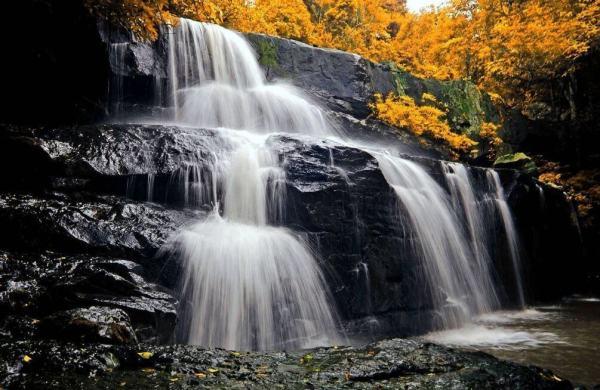 Фотообои Водопад в осеннем лесу • Тематика: Водопады | Арт ...