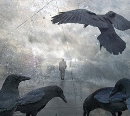 Crows by H. Koppelaney