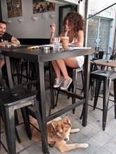 Ragazza cipriota studia in uno dei numerosi caffè della capitale